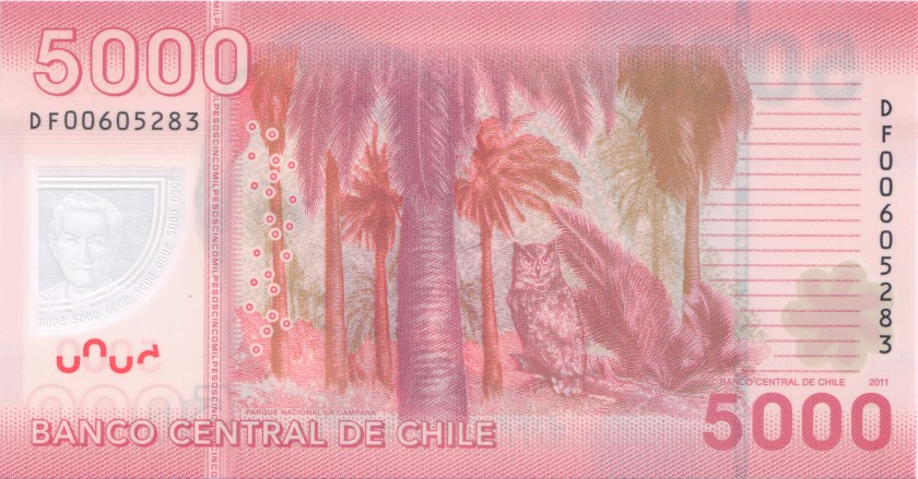 Chile P163b 5.000 Pesos 2011 UNC