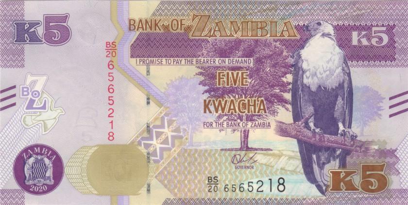 Zambia P57 5 Kwacha 2020 UNC