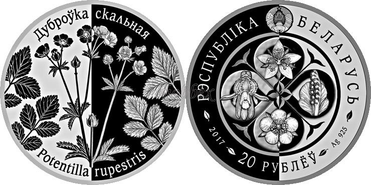 Belarus 2017 Potentilla rupestris Silver