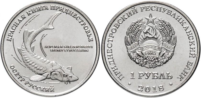 Transnistria 2018 Russian sturgeon