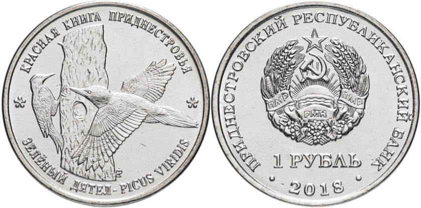 Transnistria 2018 Green woodpecker