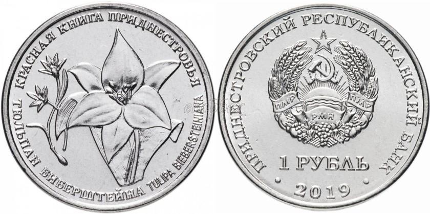 Transnistria 2019 Bieberstein's Tulip
