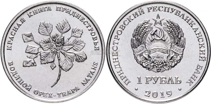 Transnistria 2019 Water nut